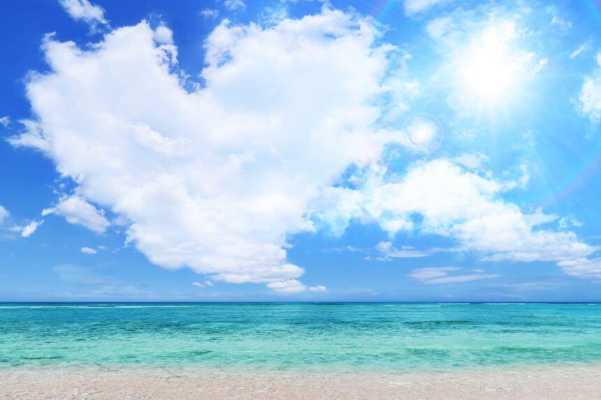 2020】海・ビーチでペットとお出かけスポット!海水浴を愛犬と楽しみましょう! | ハピプレ