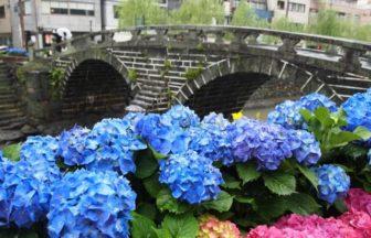 長崎・あじさい・雨の日