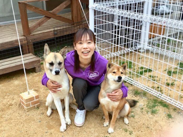 dog training 犬寺子屋・トレーニング風景